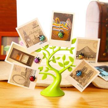 正品带防伪创意瓢虫冰箱贴磁性冰箱贴便签贴照片展示幸运树磁贴