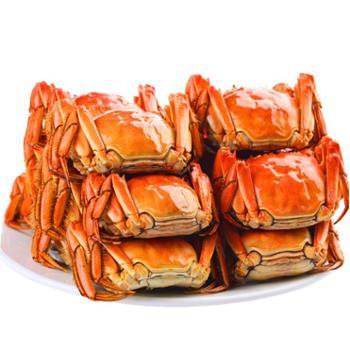 景明 现货 鲜活 特产大闸蟹8只礼盒装 4只母3.3-3.0两 4只公4.7-4.5两