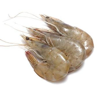 【中粮我买网】中粮凌鲜·大洋世家厄瓜多尔白虾50/601kg盒装