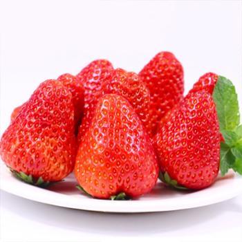 丹东--99红颜奶油草莓 3斤 大果 一斤约18颗左右