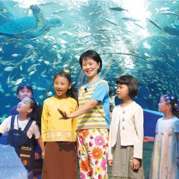 武汉东湖海洋世界水族观赏