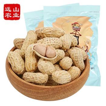 远山农业龙岩咸酥花生500g*2袋