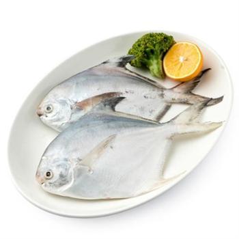 原膳东海鲳鱼400g(2条装)