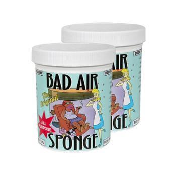 美国BADAIRSPONGE空气净化剂(400克)