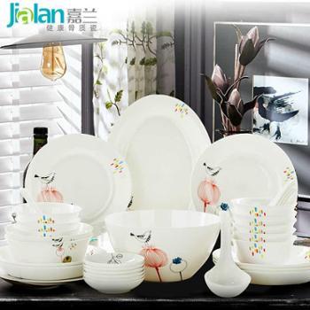 嘉兰碗碟套装 家用特价韩式唐山骨瓷餐具套装碗盘简约组合礼盒装