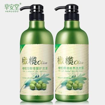 橄榄香水洗发水护发素套装 洗护家庭套装