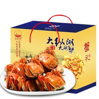 正宗大纵湖大闸蟹鲜活现货礼盒螃蟹(2.4-2两)纯母蟹8只装 新品