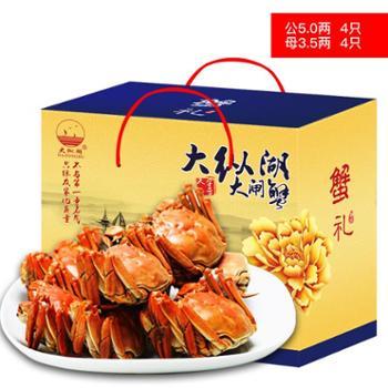 大纵湖 大闸蟹鲜活现货螃蟹礼盒 488型 (公3.0两 母2.0两 4对8只)新鲜上市