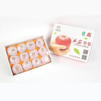 【延安中果果哒哒】陕西延安洛川苹果山地红富士苹果12枚礼盒85-90mm