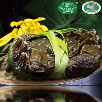 阳澄湖(闻阳)牌大闸蟹现货礼盒套餐3黑金五对公5.5-母3.8