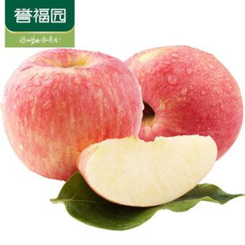 【誉福园】山东烟台苹果12枚装(80-85)顺丰快递