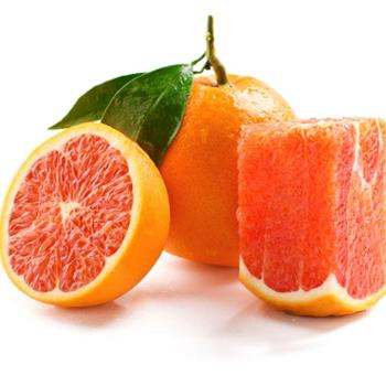 誉福园中华红血橙5斤单果装单果果径80mm