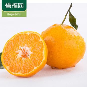 誉福园耙耙柑橘子现摘现发5斤装大果