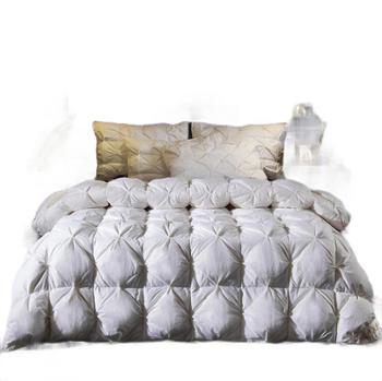 臻品羽绒被95白鹅绒全棉被子双人加厚被芯床上用品1.5/1.8米床