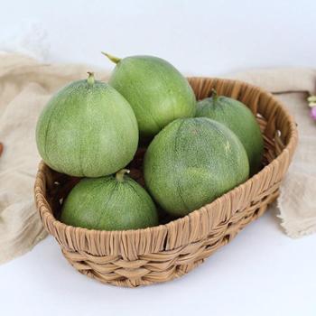 山东新鲜绿宝甜瓜当季时令孕妇水果*约5斤