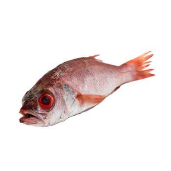 摩时渔鱼 海捕红果鲤 1斤装(2-3条/斤)