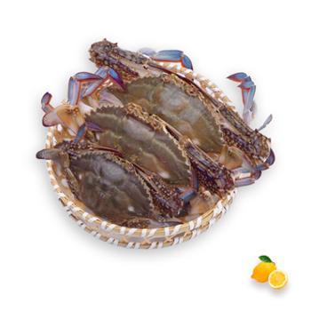 摩时渔鱼 冻品野生二母小娘蟹2斤装6-8只
