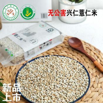 新鲜小薏米贵州特产农家粗粮杂粮包邮新货兴仁薏仁米薏米仁