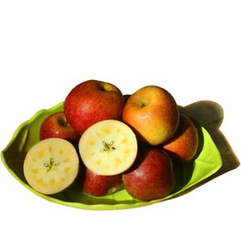 大凉山糖心丑苹果(果径80-85mm)原产地盐源县8斤大果