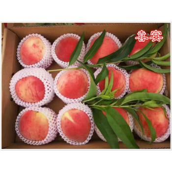 精选大蜜桃单果半斤多脆甜可口送礼有面,果园直发6斤盒装