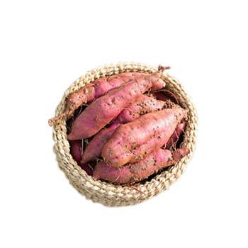遂溪西瓜红番薯5斤装/箱