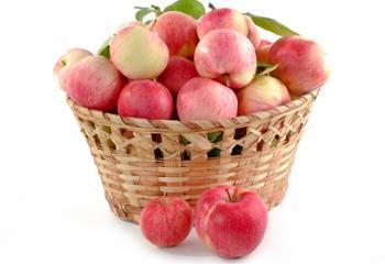 明卉源绿色无公害苹果 12粒装 果径75# 5斤左右