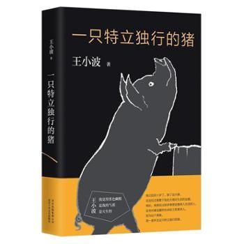 一只特立独行的猪王小波杂文精选集,逝世二十周年精装纪念版