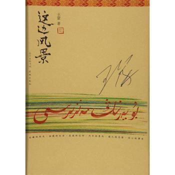 这边风景(典藏版) 花城出版社 王蒙 小说 社会