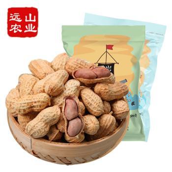 远山农业龙岩特产带壳花生蒜香500g+咸酥500g