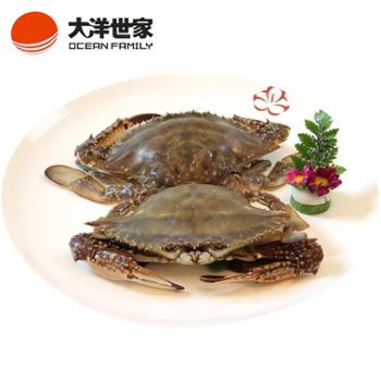 大洋世家/OCEANFAMILY舟山红膏梭子蟹200-300g/只野生海捕新鲜活冻红