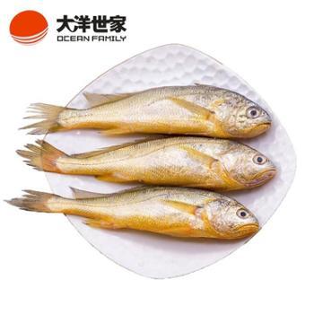 大洋世家舟山野生小黄鱼(90-140g)/条共450g鲜嫩美味