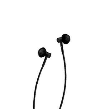 小米双单元半入耳式耳机Type-C版 黑色