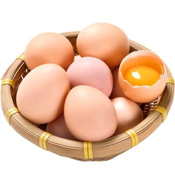 荆选 谷饲五峰鸡蛋 30枚