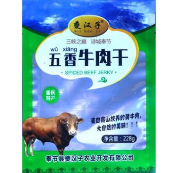 夔汉子 奉节鲜牛肉干五香麻辣味 228g
