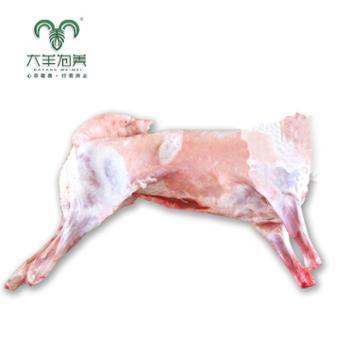 大羊为美 盐池滩羊整只白条羊 15kg左右