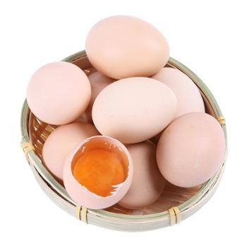 固佳 农家新鲜笨鸡蛋 40枚