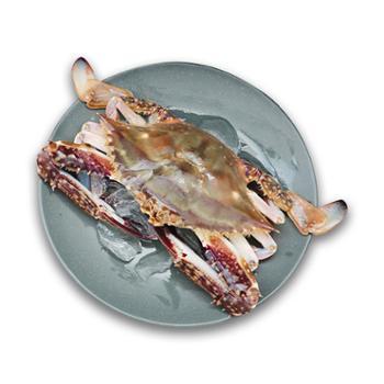 摩时渔鱼舟山超低温速冻梭子蟹3斤约5-6个装