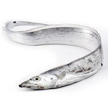 摩时渔鱼舟山雷达网液氮冬至带鱼整条200-300g/条3斤装