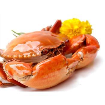 三门青蟹阿林水产2公2母2斤4个公母混搭