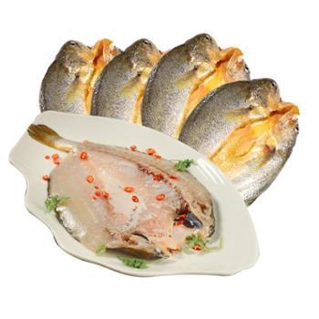 海客船东海大黄鱼温州特产开背腌制黄鱼鲞300g×4条装