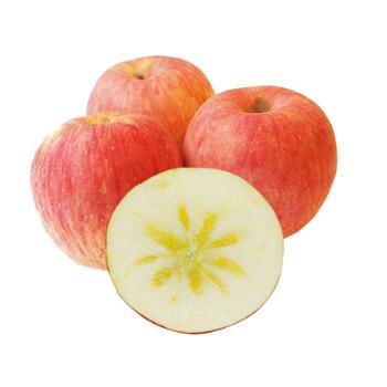 珍果年华 阿克苏冰糖心苹果 净重9斤 果径80-90mm
