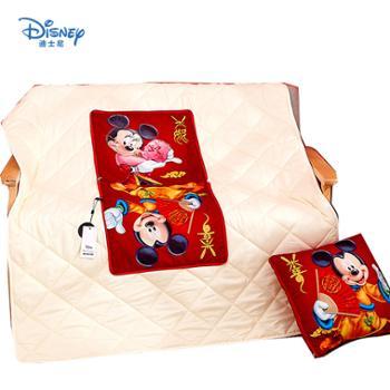 Disney/迪士尼3D幻彩抱枕被3D暖绒