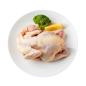 稻谷泉 小公鸡 散养童子鸡 新鲜 (2只1500g)