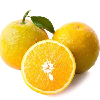 果瓤好湖北恩施特产巴东夏橙(中小果)5斤