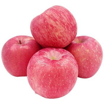 青林小鹿陕西优质红富士大苹果产地直销90mm12枚