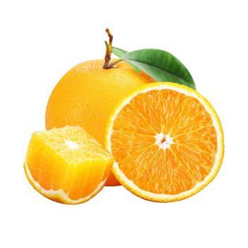 张许秋高山脐橙9斤单果70mm起