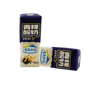 青藏牧场青稞黑米酸奶200gx10盒
