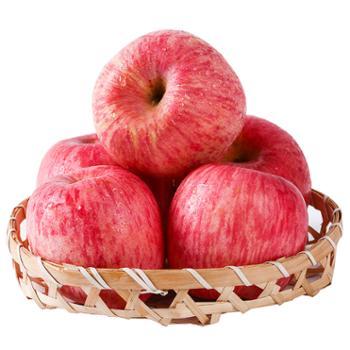 鑫鲜聚山东烟台红富士苹果5斤大果(单果75mm以上)8-12个
